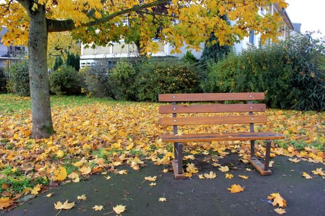 Autumn in Luxembourg Roxana Mironescu