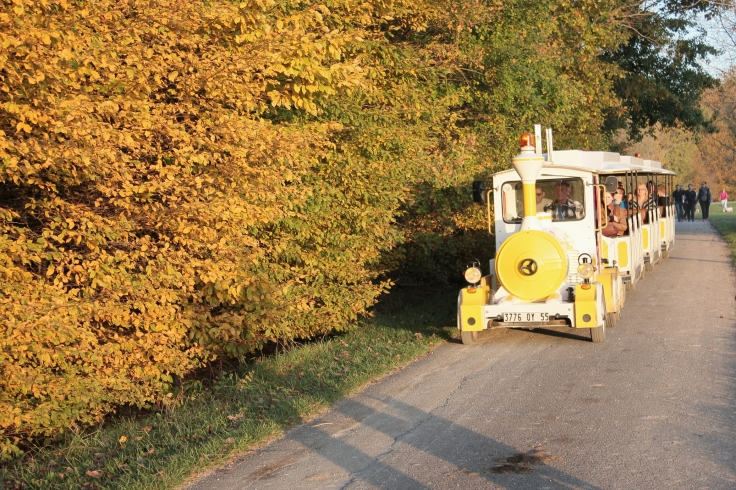 Little trains are available for tourists who want to explore the area but don't like walking