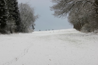 Snow, nature and bikers